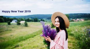 Happy New Year 2019 – Best wishes – free images – cex