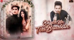 Bhula Na Teri Baatein Lyrics and Video