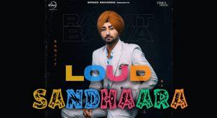 Sandhaara Lyrics